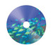 CD-R Wide Silver Inkjet Printable No ID Brand